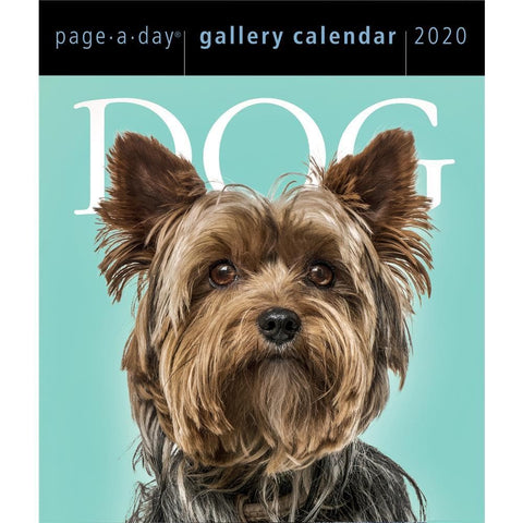 Dog Gallery 2020 Box CalendarFront Cover