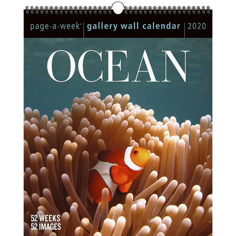 Ocean Gallery 2020 Wall Calendar Front Cover