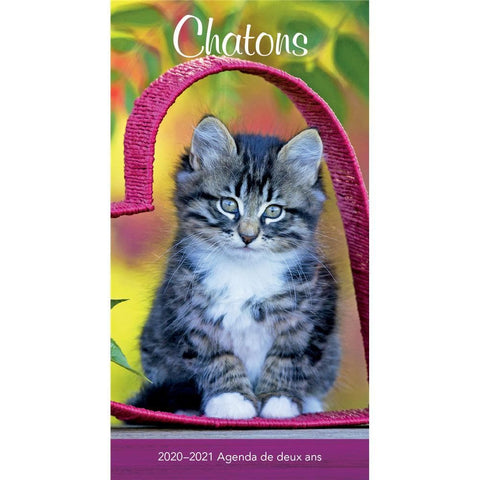 Chatons 2020 French 2yr Pocket Planner Calendar Front Cover