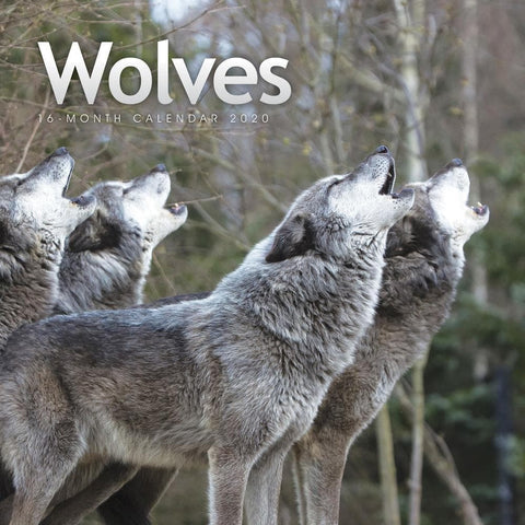 Wolves 2020 Wall CalendarFront Cover