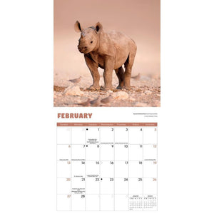 Baby Animals 2022 Mini Calendar (Pre-Order) Product Image
