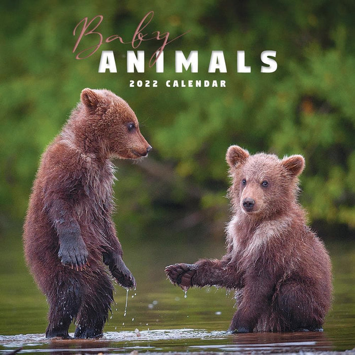 Baby Animals 2022 Mini Calendar (Pre-Order)