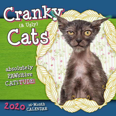 Cranky and Ugly Cats Absolute Catitude 2020 Wall Calendar Front Cover