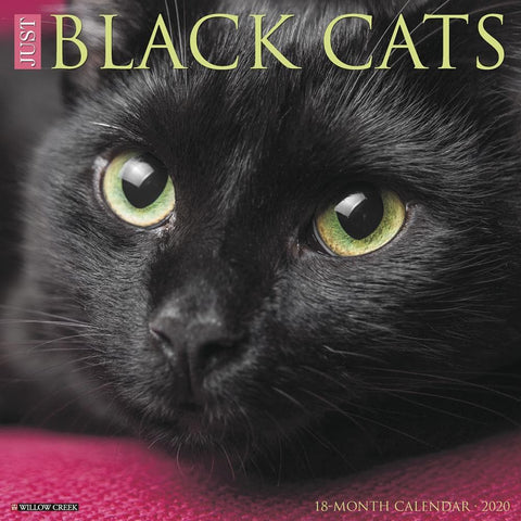 Just Black Cats 2020 Wall Calendar Front Cover