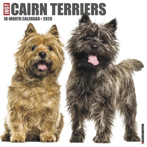 Just Cairn Terriers 2020 Wall Calendar Front Cover