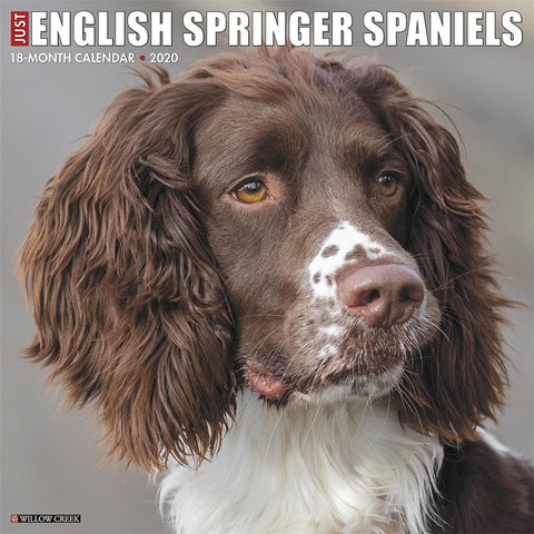 Just English Springer Spaniels 2020 Wall Calendar Front Cover