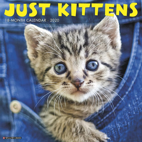 Just Kittens 2020 Wall Calendar Front Cover