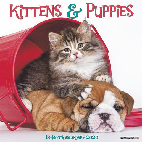 Kittens and Puppies 2020 Wall Calendar Front Cover