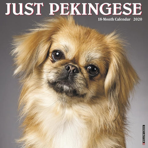 Pekingese Just 2020 Wall Calendar Front Cover