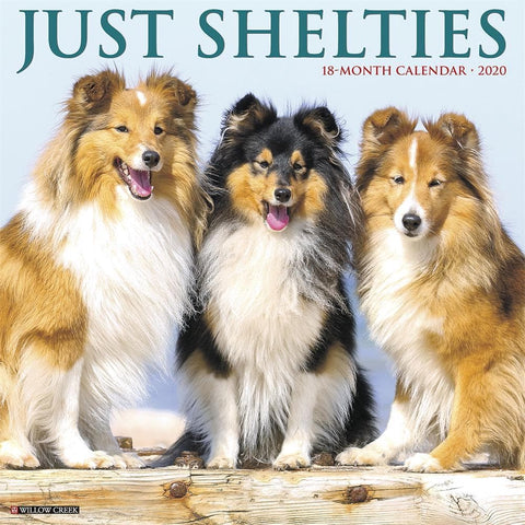 Just Shelties 2020 Wall Calendar Front Cover