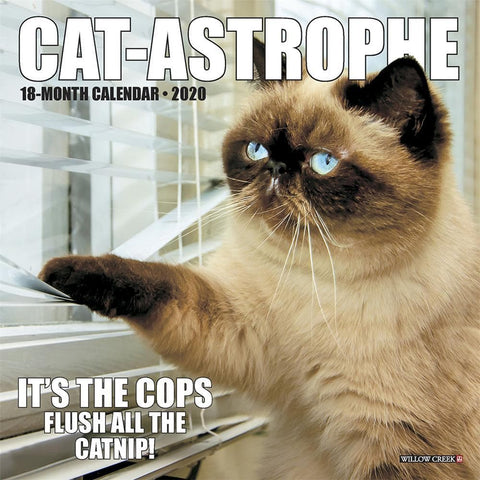 Cat astrophe 2020 Mini Calendar Front Cover