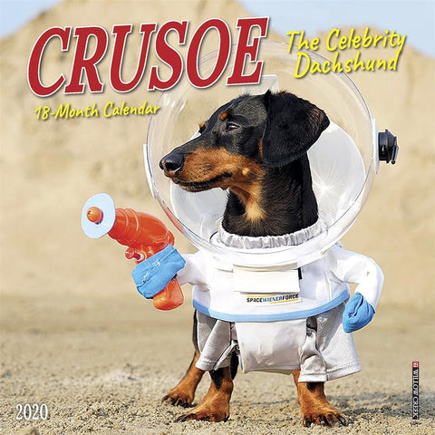 Crusoe the Celebrity Dachshund 2020 Mini Calendar Front Cover