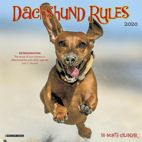 Dachshund Rules 2020 Mini Calendar Front Cover