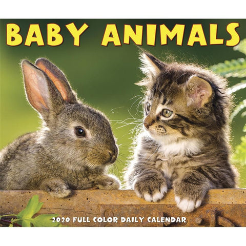 Baby Animals 2020 Box Calendar Front Cover