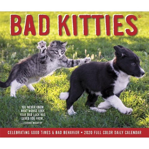 Bad Kitties 2020 Box Calendar Front Cover