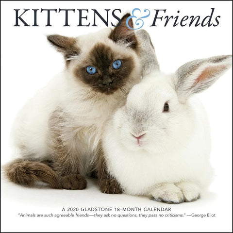 Kittens and Friends 2020 Mini Calendar