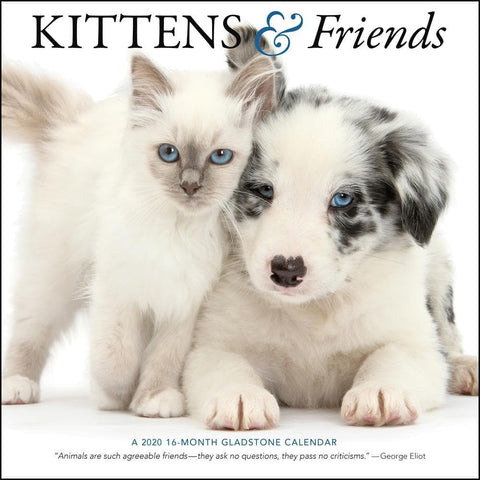 Kittens and Friends 2020 Wall Calendar