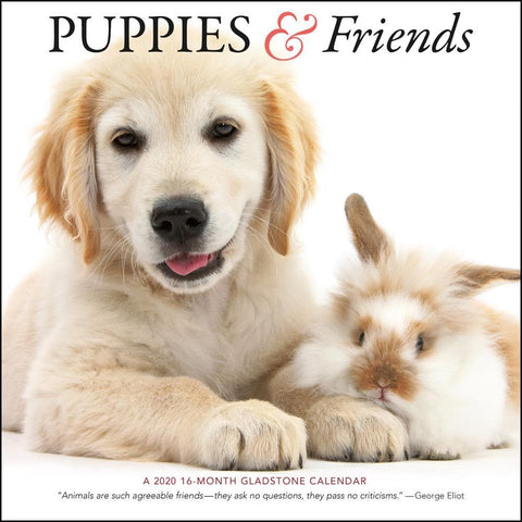 Puppies and Friends 2020 Wall Calendar