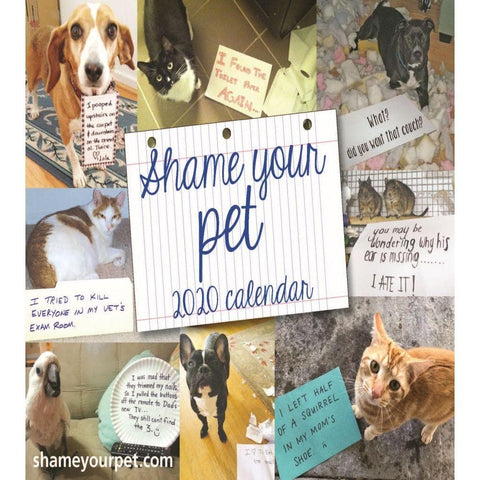 Shame your Pet 2020 Box Calendar