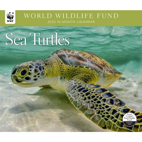 Sea Turtles WWF 2020 Wall Calendar Front Cover