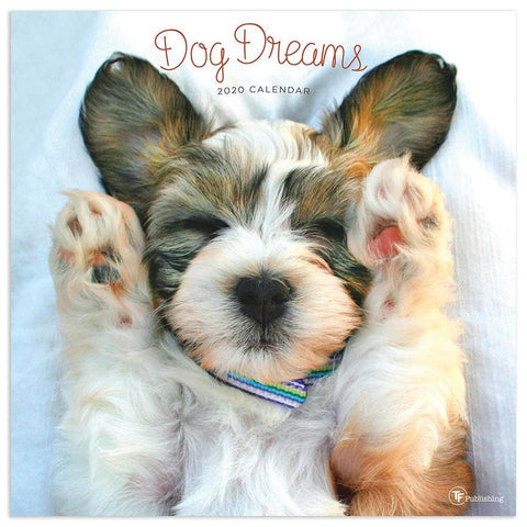 Dog Dreams 2020 Wall Calendar Front Cover