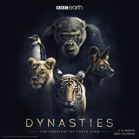 Dynasties 2020 Wall Calendar Front Cover