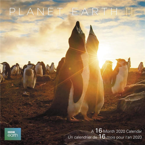 Planet Earth Bilingual 2020 Wall Calendar - Online Exclusive Front Cover