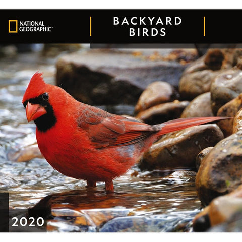 Backyard Birds NG 2020 Wall Calendar Front Cover