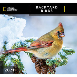 Backyard Birds NG 2021 Wall Calendar Front Cover Image
