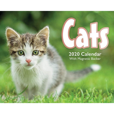 Cats 2020 Small Box Calendar Front Cover