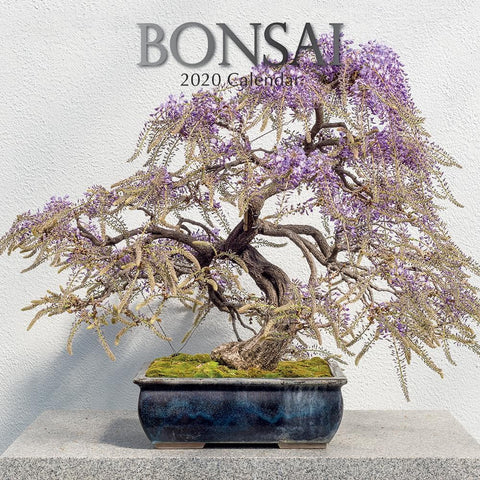 Bonsai 2020 Wall Calendar - Online Exclusive Front Cover
