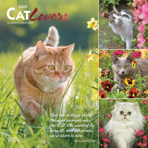 Cat Lovers 2020 Wall Calendar Front Cover