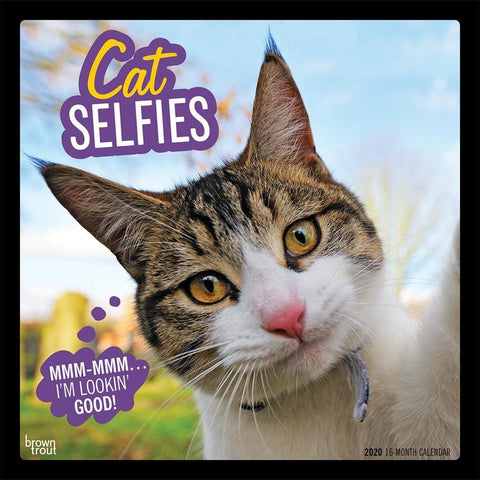 Cat Selfies 2020 Wall Calendar Front Cover