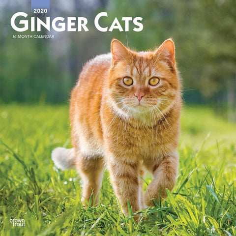 Ginger Cats 2020 Wall Calendar Front Cover