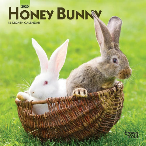 Honey Bunny 2020 Mini CalendarFront Cover