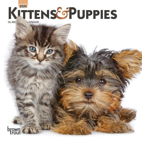 Kittens and Puppies 2020 Mini CalendarFront Cover
