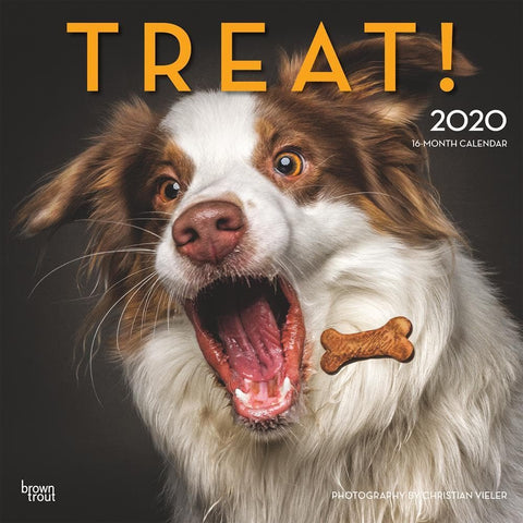Treat 2020 Wall Calendar Front Cover