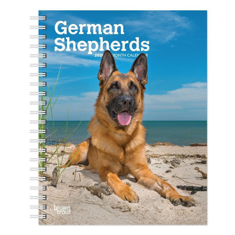 German Shepherds 2020 Engagement Calendar Front Cover