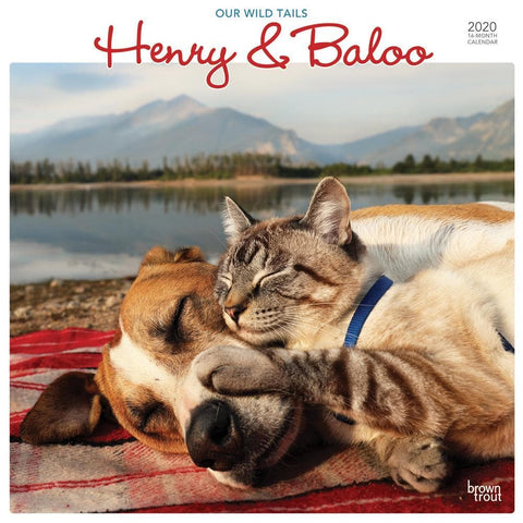 Henry and Baloo Our Wild Tails 2020 Wall Calendar Front Cover