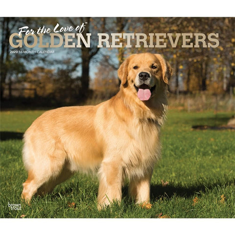 Golden Retrievers For the Love of Deluxe 2020 Wall Calendar  Front Cover