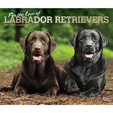Lab For the Love of Deluxe 2020 Wall Calendar  Front Cover