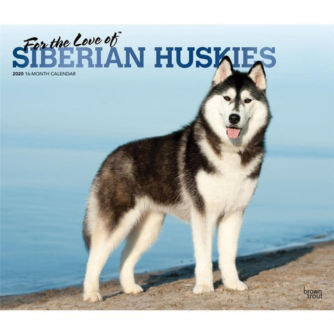 Siberian Huskies For the Love of Deluxe 2020 Wall Calendar  Front Cover
