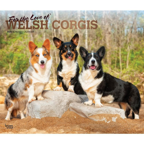 Corgis Welsh For the Love of Deluxe 2020 Wall Calendar  Front Cover