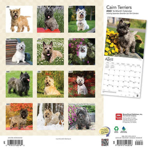 Cairn Terriers 2022 Wall Calendar Product Image