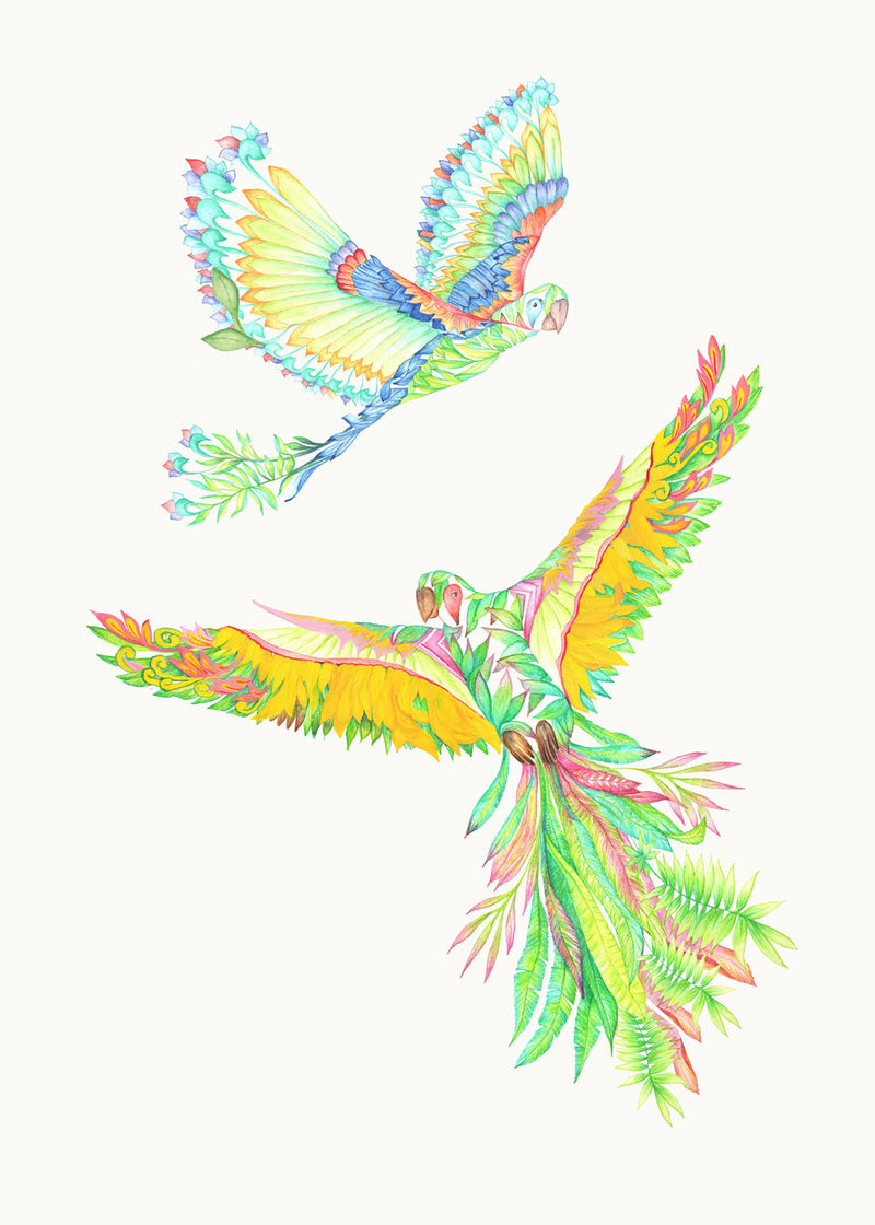 MACAW ART PRINT - EXOTIC MAGICAL BIRDS SERIES Limited Edition - Victoria von Stein Design