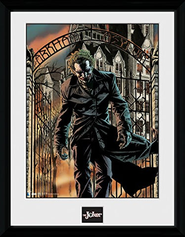 Batman Arkham Asylum Framed Portrait