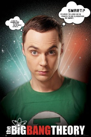 The Big Bang Theory Sheldon Poster