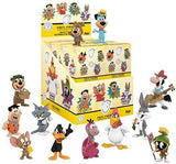 Funko POP! Warner Bros Mystery Minis Figure (Assorted 1 Piece)