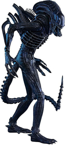 Hot Toys Aliens Alien Warrior 1/6th Scale Collectible Figure