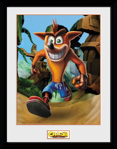 Crash Bandicoot Crash Portrait